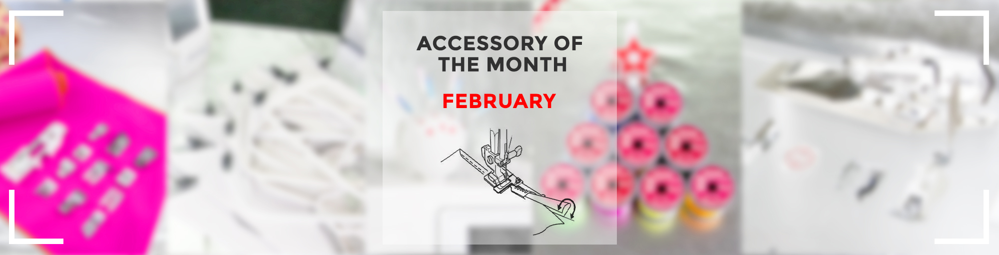 Accessory of the month feb